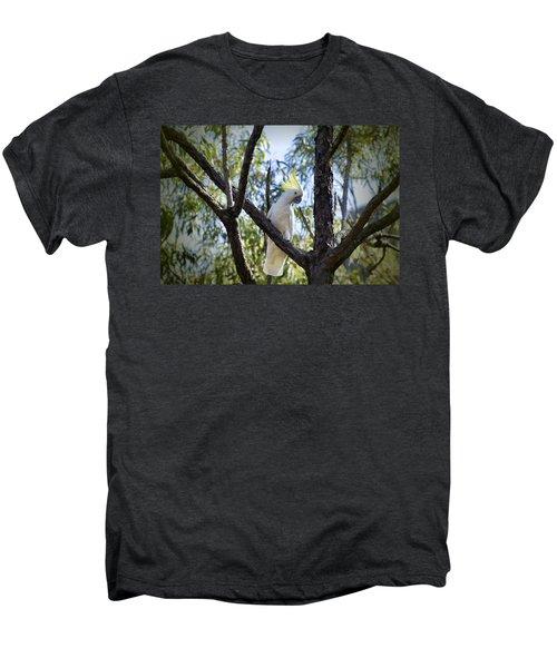 Sulphur Crested Cockatoo Men's Premium T-Shirt by Douglas Barnard