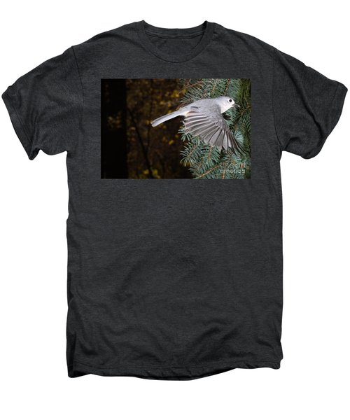 Tufted Titmouse In Flight Men's Premium T-Shirt by Ted Kinsman