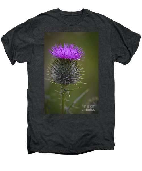 Blooming Thistle Men's Premium T-Shirt