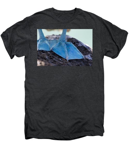 Blue Footed Booby Men's Premium T-Shirt by Dave Fleetham