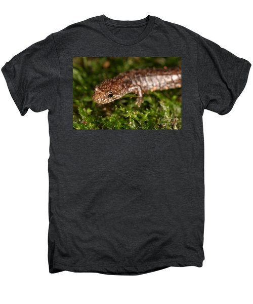 Red-backed Salamander Men's Premium T-Shirt by Ted Kinsman