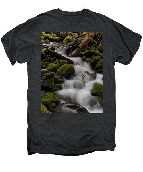 Stepping Stones Men's Premium T-Shirt