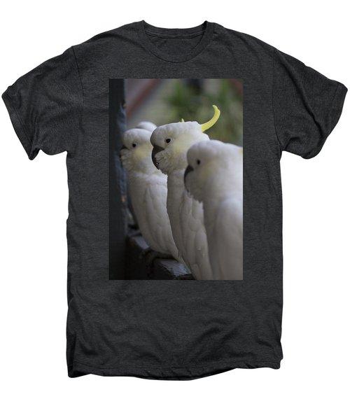 The Line-up Men's Premium T-Shirt by Douglas Barnard
