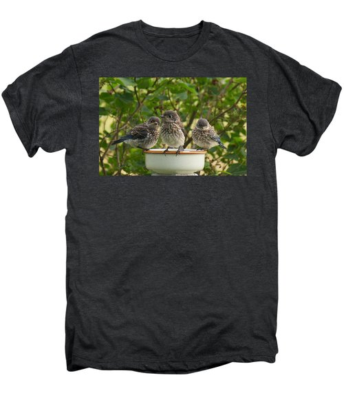 Trouble Times Three Men's Premium T-Shirt by Bill Pevlor