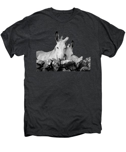 Two White Irish Donkeys Men's Premium T-Shirt by RicardMN Photography