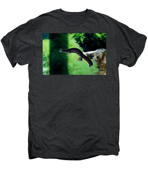 Alpine Newt Triturus Alpestris Men's Premium T-Shirt by Gerard Lacz