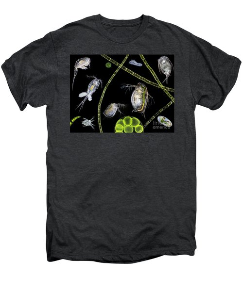Pond Life Men's Premium T-Shirt