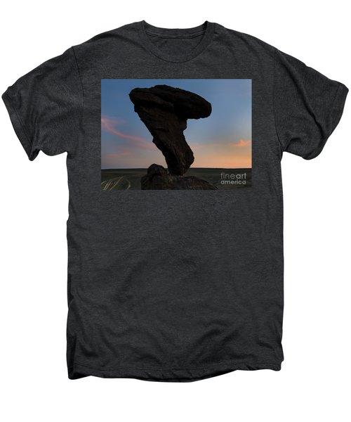 A Matter Of Balance Men's Premium T-Shirt