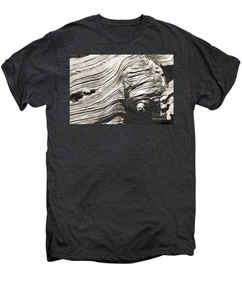 Aging Of Time Men's Premium T-Shirt by Yulia Kazansky
