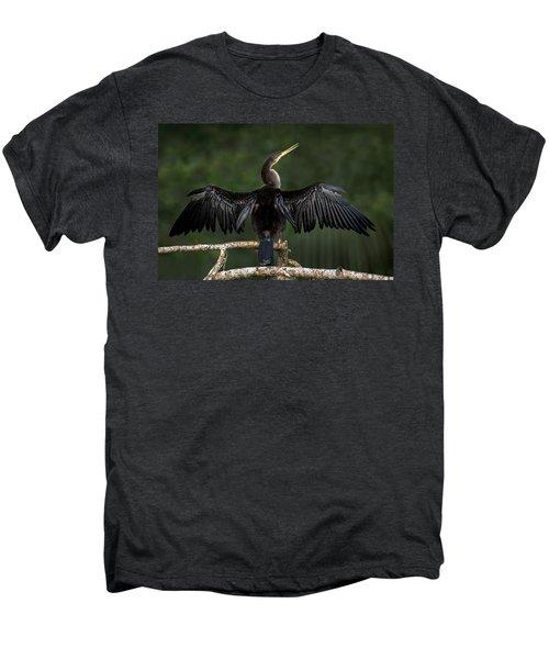 Anhinga Anhinga Anhinga Perching Men's Premium T-Shirt