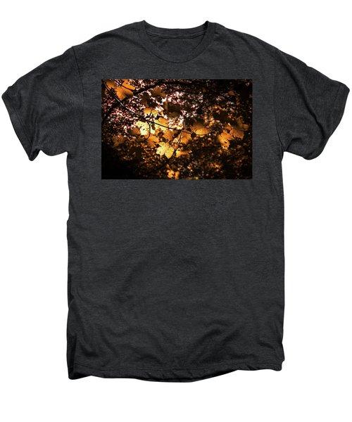 Autumn Leaves Men's Premium T-Shirt