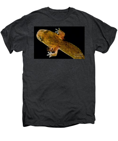 California Giant Salamander Larva Men's Premium T-Shirt