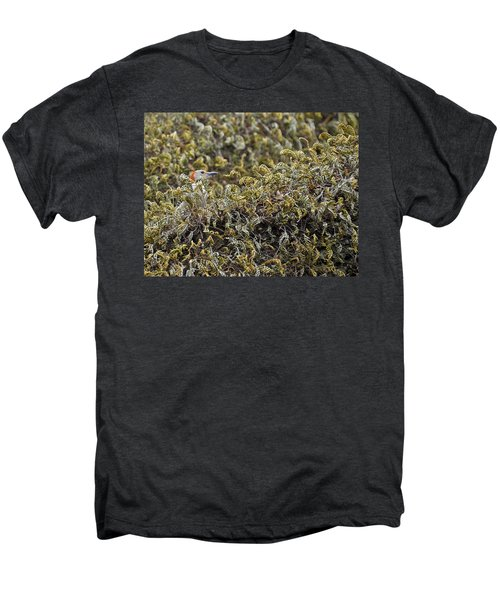 Camouflaged Red-bellied Woodpecker Men's Premium T-Shirt by Carolyn Marshall