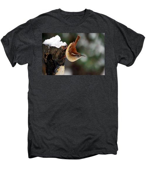 Carolina At The Suet Post Men's Premium T-Shirt by Skip Willits