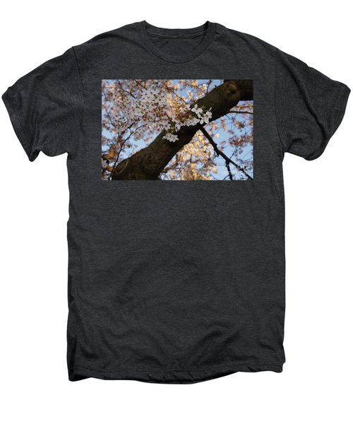 Cherry Blossoms Men's Premium T-Shirt by Megan Cohen