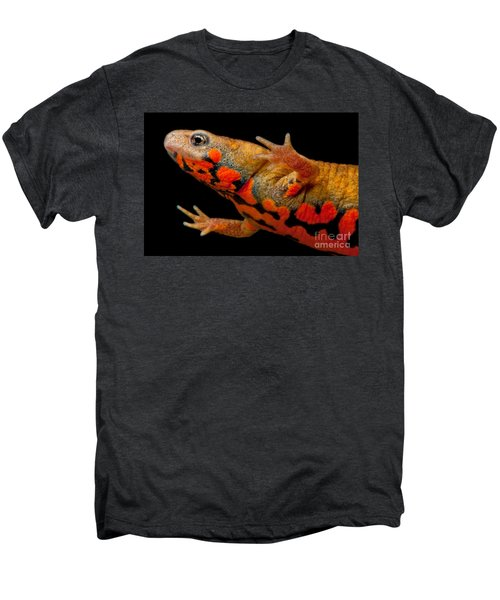 Chuxiong Fire Belly Newt Men's Premium T-Shirt