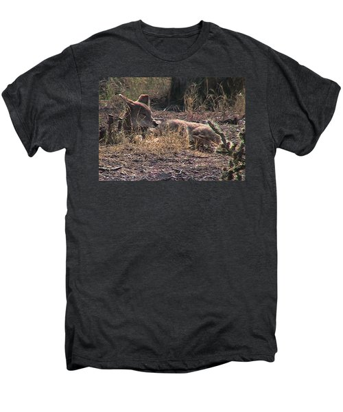 Resting Coyote Men's Premium T-Shirt