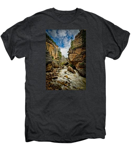 Crazy Woman Canyon Men's Premium T-Shirt