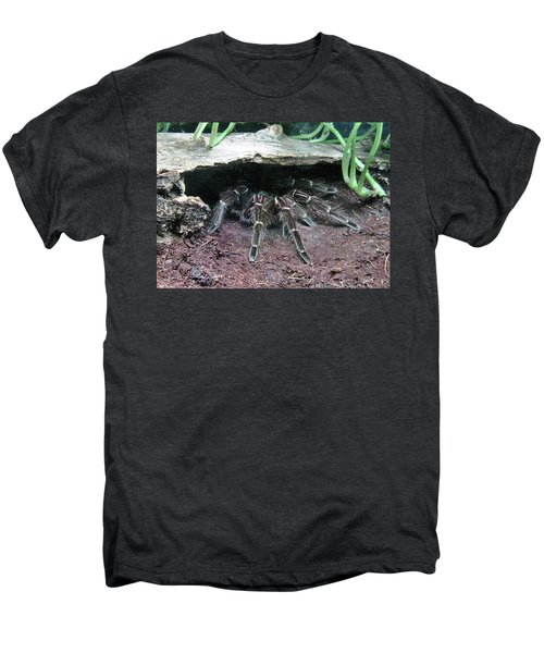 Desert Tarantula Men's Premium T-Shirt