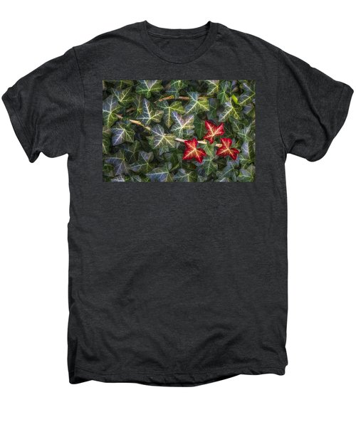 Men's Premium T-Shirt featuring the photograph Fall Ivy Leaves by Adam Romanowicz