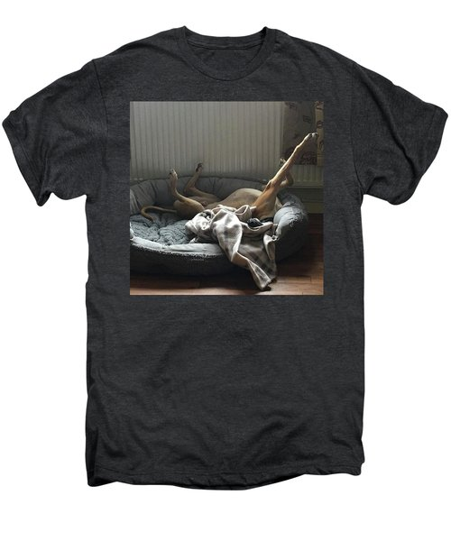 Finly Seems To Be Settling Into His New Men's Premium T-Shirt
