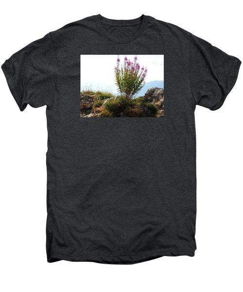 Fireweed Epilobium Angustifolium Men's Premium T-Shirt