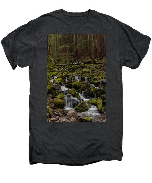 Forest Cathederal Men's Premium T-Shirt
