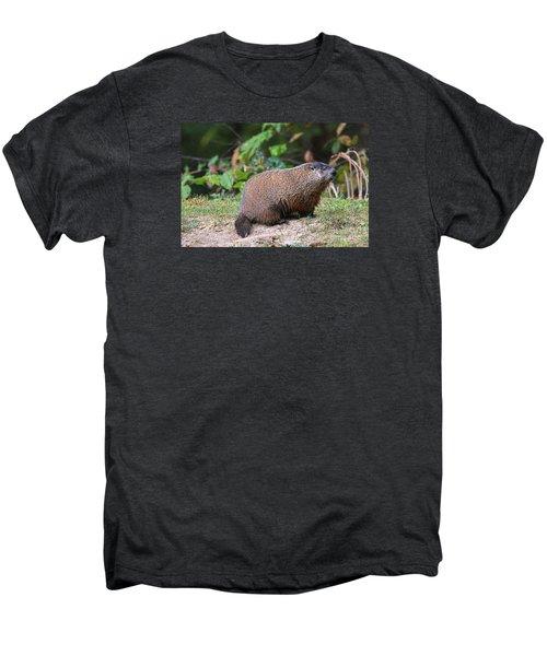 Groundhog  0590 Men's Premium T-Shirt by Jack Schultz