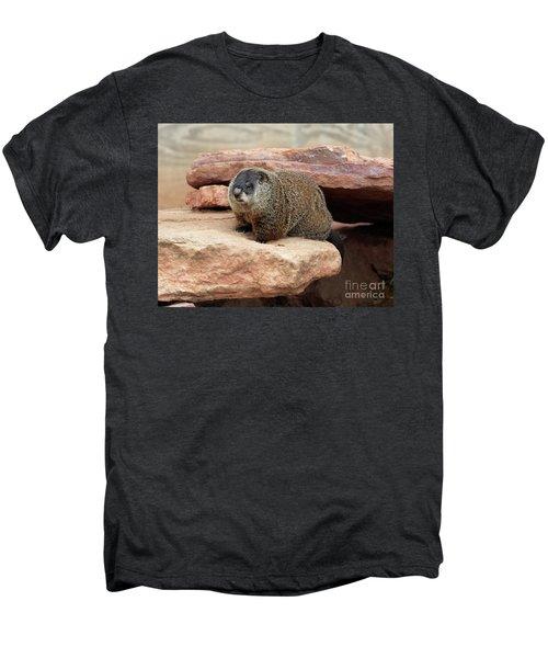 Groundhog Men's Premium T-Shirt by Louise Heusinkveld