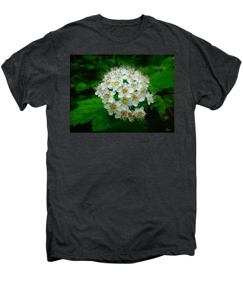Hawthorn Hearts Men's Premium T-Shirt
