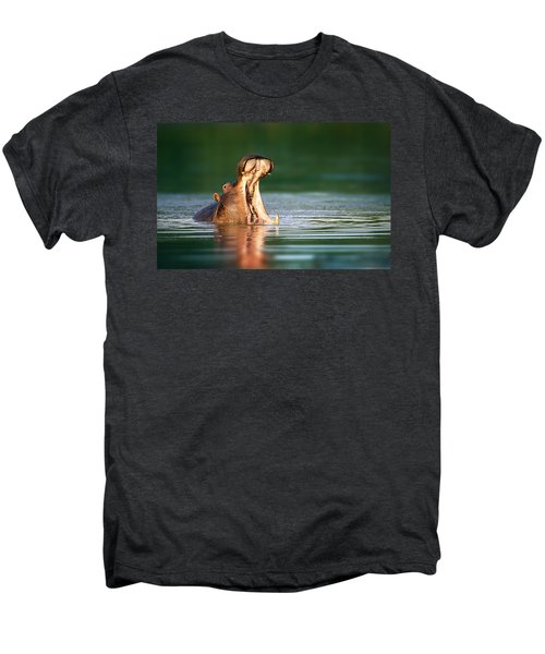 Hippopotamus Men's Premium T-Shirt by Johan Swanepoel