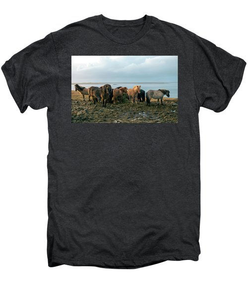 Horses In Iceland Men's Premium T-Shirt
