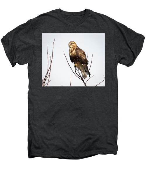 Juvenile Rough-legged Hawk  Men's Premium T-Shirt by Ricky L Jones
