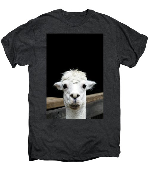 Llama Men's Premium T-Shirt by Lauren Mancke
