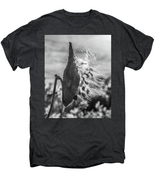 Milkweed Pod Back Lit B And W Men's Premium T-Shirt