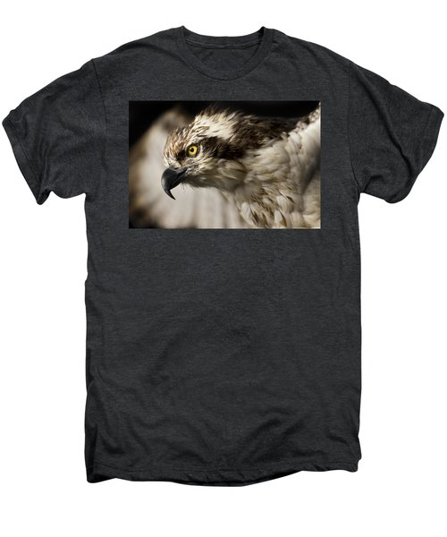 Osprey Men's Premium T-Shirt by Adam Romanowicz