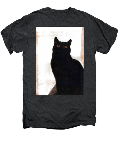 Panther The British Shorthair Cat Men's Premium T-Shirt