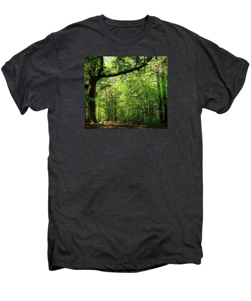 Paris Mountain State Park South Carolina Men's Premium T-Shirt