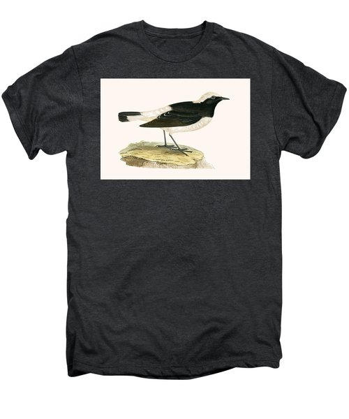 Pied Wheatear Men's Premium T-Shirt by English School