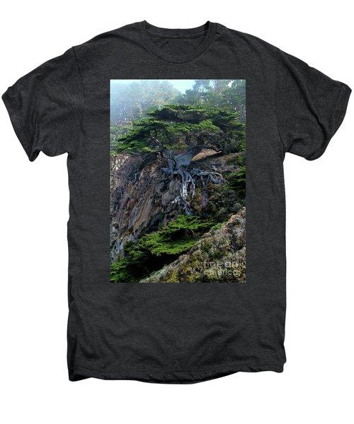 Point Lobos Veteran Cypress Tree Men's Premium T-Shirt