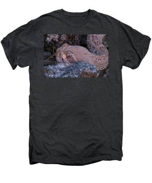 Rattlesnake Portrait Men's Premium T-Shirt