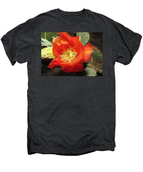 Red Bloom 1 - Prickly Pear Cactus Men's Premium T-Shirt