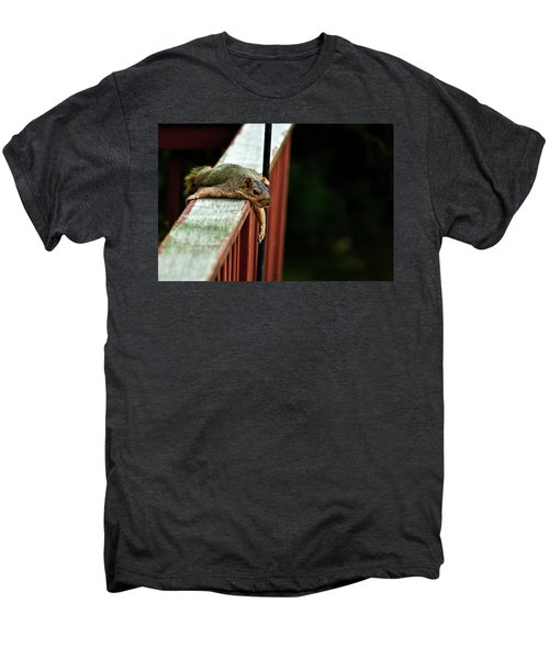 Resting Squirrel Men's Premium T-Shirt