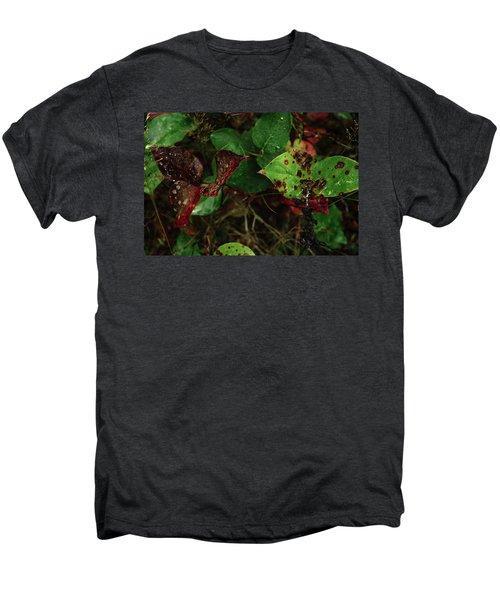 Season Color Men's Premium T-Shirt