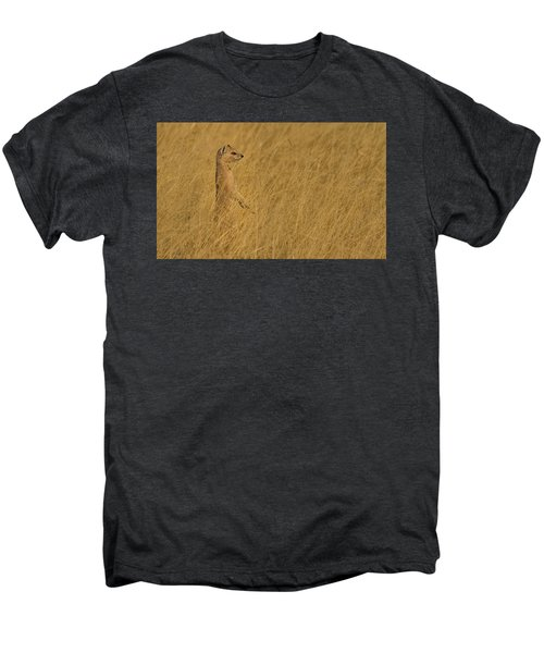 Sentinel Men's Premium T-Shirt