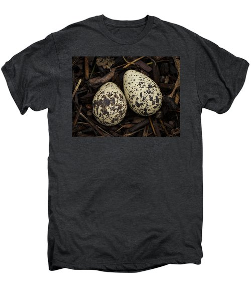 Speckled Killdeer Eggs By Jean Noren Men's Premium T-Shirt