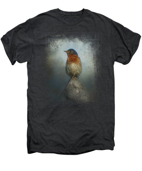 The Highest Point Men's Premium T-Shirt by Jai Johnson