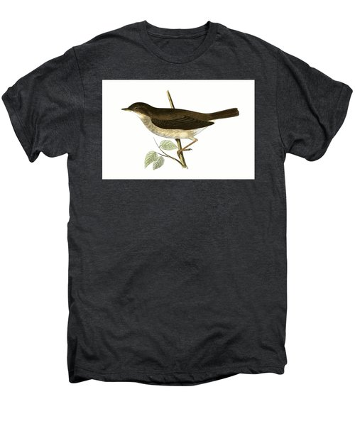 Thrush Nightingale Men's Premium T-Shirt by English School