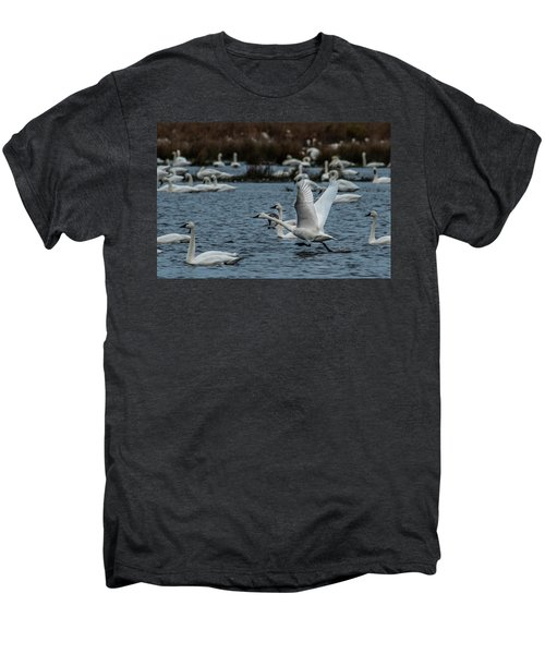 Tundra Swan And Liftoff Head Start Men's Premium T-Shirt