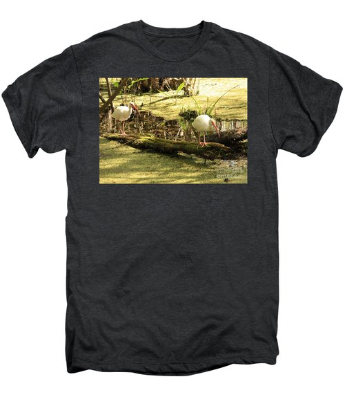 Two Ibises On A Log Men's Premium T-Shirt by Carol Groenen